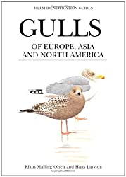 By Klaus Malling Olsen Gulls of Europe, Asia and North America (Helm Identification Guides)