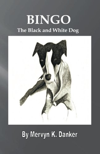 Bingo: The Black and White Dog