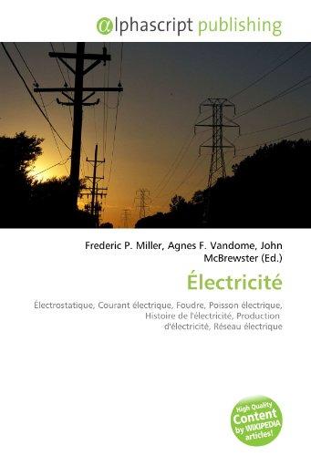 Électricité: Électrostatique, Courant électrique, Foudre, Poisson électrique, Histoire de l'électricité, Production d'électricité, Réseau électrique