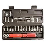 Rubyu Mini Ratschen Set Drehmomentschlüssel mit Bitsatz und Tasche Multitool Reparaturwerkzeug Fahrrad Werkzeugset für unterwegs, Zuhause, Hobby, Freizeit