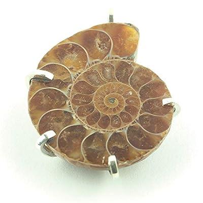 "Pendentif fossile d'ammonite de Madagascar serti d'argent 38x32x9 mm (1,5x1,26x0,35"") env."