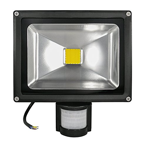LED Fluter LDD-FL-20-BM-WW