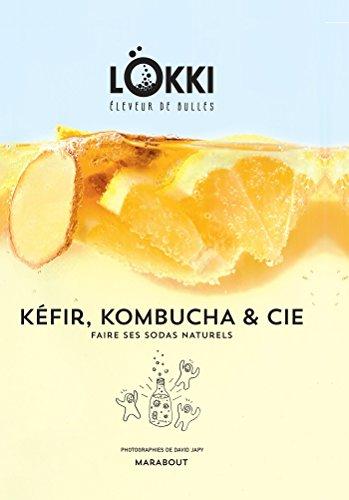 Kefir, kombucha et cie: Faire ses sodas naturels par Lokki