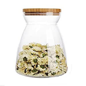 Vase en Verre Transparent pour Plantes Fleurs Bouteille de Rangement avec Couvercle Décoration Multifonction
