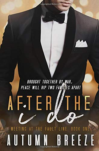 After The I Do (Meeting At The Fault Line, Band 1) -