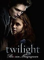 Twilight - Biss zum Morgengrauen hier kaufen