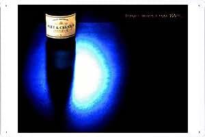 """Enseignes affiche en metal de Moet & Chandon Champagne: IMAGINE HAVING A COOL 750ML 8""""x12"""""""