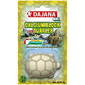 Dajana Calcium Block Wasseraufbereitung für Schildkröten Becken mit Kalzium