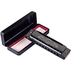Amosic Armónica 10 Agujeros 20 Tonos con Placa Inoxidable con Clave C, Fácil de Limpiar, Peso 100 Gramos, Perfecto para Principantes