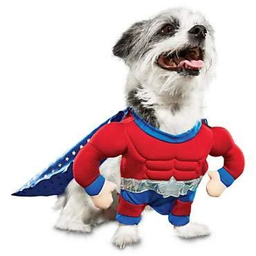Bootique Superheld Hund Pet Kostüm, XS, XS, 27,9-33cm