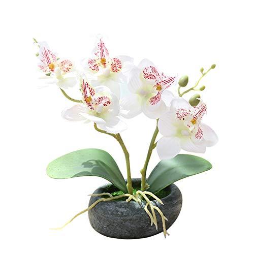 Flikool 2 Stems Orchideen Künstlich im Topf Phalaenopsis Künstlich Blumen Pflanzen Gefälschte Orchidee Kunstblumen Kunstpflanzen Topfpflanzen Für Balkon Haus Büro Tabelle Dekoration - Weiß