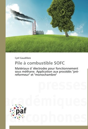 Pile  combustible sofc