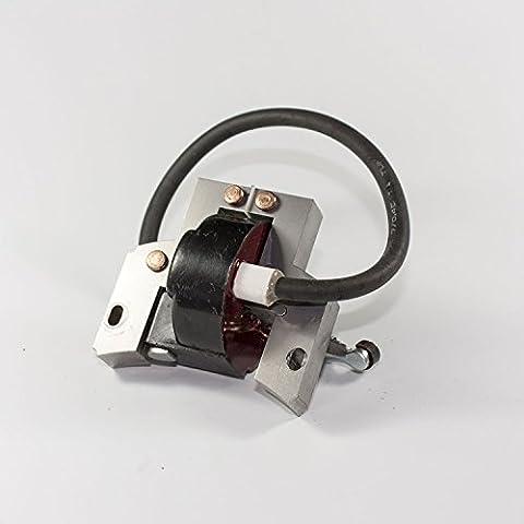 Bobina de encendido Briggs Stratton & 2-4P-004018 para motor