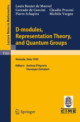 D-modules, Representation Theory, and Quantum Groups: Lectures given at the 2nd Session of the Centro Internazionale Matematico Estivo (C.I.M.E.) held in Venezia, Italy, June 12-20, 1992