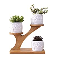 ypypiaol Owl Pattern Ceramic Succulent Plant Flower Pot Holder Planter Bamboo Shelf Rack Accessory