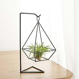 mkono h ngende metall tillandsia air pflanze luftpflanzen. Black Bedroom Furniture Sets. Home Design Ideas