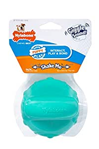 Nylabone Puppy Toy Giggle Ball