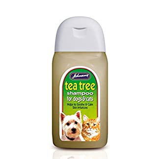 Johnsons Dog Cat Tea Tree Grooming Shampoo for itchy sensitive skin Johnson's 6 x Dog & Cat Tea Tree Shampoo 414DTWOyvWL