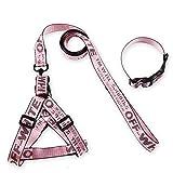 Halsband für Hundehalsband, Zugseil & Hundehalsband Hundehalsband Dreiteiliges, Exquisites Nylon, Metallbeschläge, kleine und Meduim Hundeleine (größe : S)