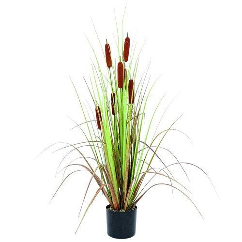 Euro Palms 82600130 Schilfrohr mit Binsen, 120 cm
