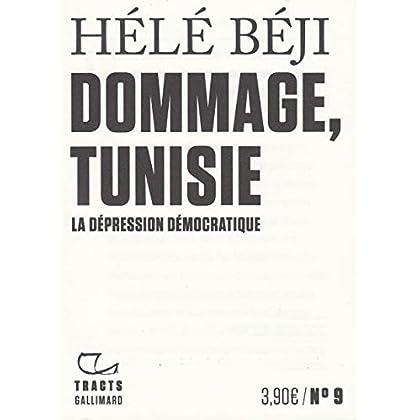Dommage, Tunisie: La dépression démocratique
