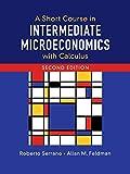 A Short Course in Intermediate Microeconomics with Calculus - Roberto Serrano, Allan M. Feldman