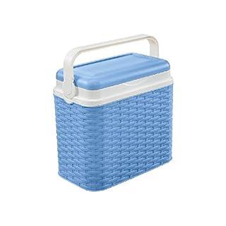 AK Sport Unisex's Rotan Cool Box, Blue, Small/10 Litre
