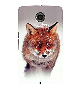 PrintVisa Animal of Snow 3D Hard Polycarbonate Designer Back Case Cover for Motorola Nexus 6 :: Motorola Nexus X :: Motorola Moto X Pro :: Motorola Google Nexus 6