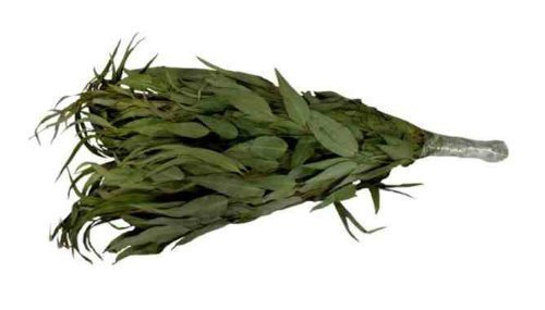 Eukalyptusreisig - Eukalyptusquast - Wenik - Vhita