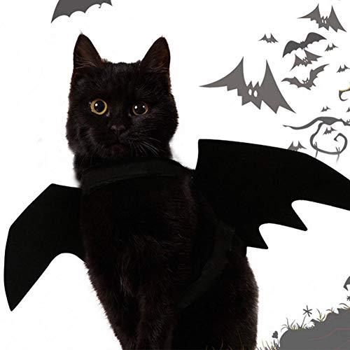 XISTORE Fledermausflügel für Katzen Halloween Haustier Hund Fledermaus Flügel Katze Fledermaus Kostüm Haustier Fledermaus Kostüm Haustier Fledermaus Kostüm Katze ()