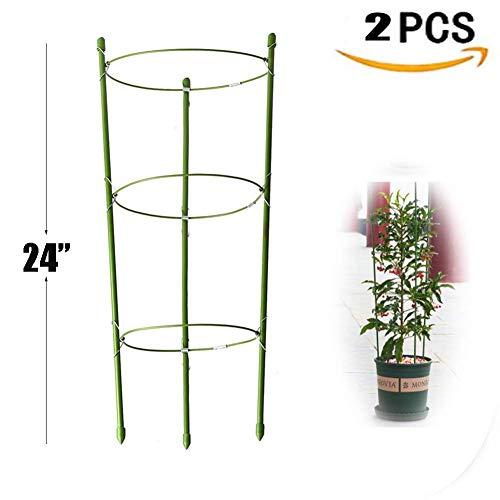 Yojoloin 2pezzi anello di supporto per piante da giardino traliccio fiore in acciaio inox sostegno vegtables rampicanti e fiori e frutta grow gabbia con 3anelli regolabile 61cm (pezzi)