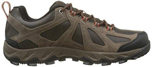 Columbia Peakfreak Xcrsn Ii Low Outdry, Chaussures de Randonnée Basses Homme Noir (Cordovan/Sanguine 231)