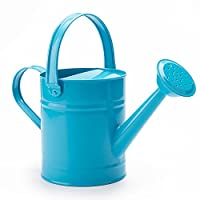 WORTH 1.5 Letre Metal Watering Bucket,Beautiful Green Kids Children Garden Watering Can with Anti-rust Powder Coating