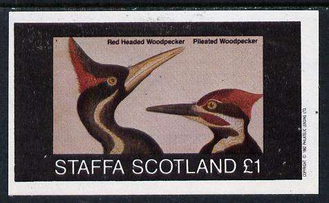 Staffa 1982 Birds #30 (Red Headed Woodpecker) imperf souv sht (£1 value) u/m BIRDS WOODPECKER JANDRSTAMPS (10387) -