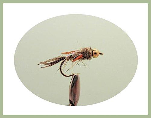 12Stück gold Bead Natural Evil eugenii Trout Fliegen, gemischt Größe 10/12