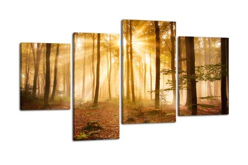 Leinwandbild Wald am Morgen LW320 Wandbild, Bild auf Leinwand, 4 Teile, 180x115cm, Kunstdruck Canvas, XXL Bilder, Keilrahmenbild, fertig aufgespannt, Bild, Holzrahmen, Dunst, Stimmung, Baum