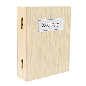TS-Optics ZOOLOGIE / Tiere Dauerpräparate für Mikroskope - 25 Stück in Holzbox (mit deutscher Übersetzung der Inhaltsangabe), .. Beispielbilder aus dem Inhalt, TSMDPZ