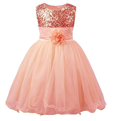 SWISSWELL Kinder Kleid für Mädchen mit Blume Ärmellos Hochzeits Festzug Stickerei Prinzessin...