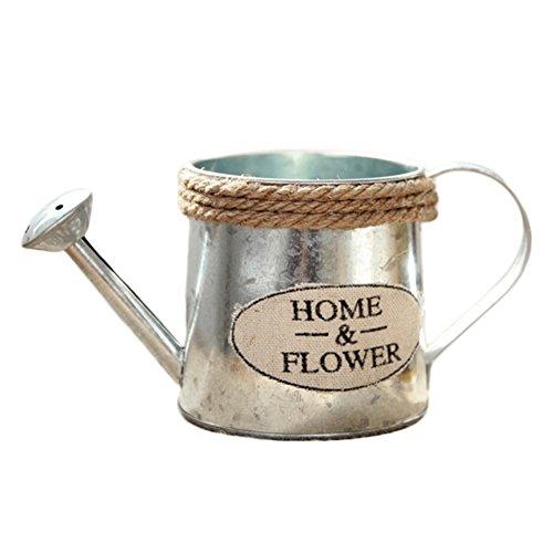 Vintage Metall Blumentopf Flower Krüge Krug Handwerk Bewässerung Blumenarrangement Home Decor Succulents Blumen Topf, Eimer, A (In Hortensie Voller Größe)