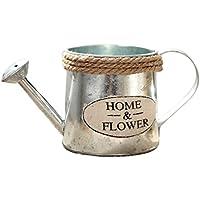 Lembeauty klassische Mini-Metallgießkanne zum Bewässern von Bonsai und Sukkulenten, für Haus, Garten, Balkon und als Dekoration