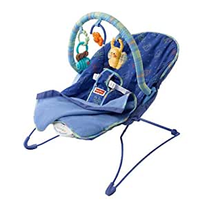 Fisher-Price Link-A-Doos Bouncer