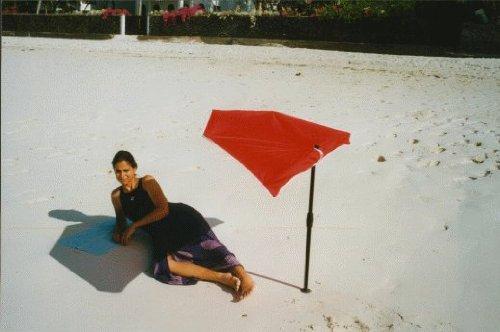 –Playa de Baño–Compartimiento de jardín–Exterior–Sombrilla con base de aluminio Multi Soporte +...