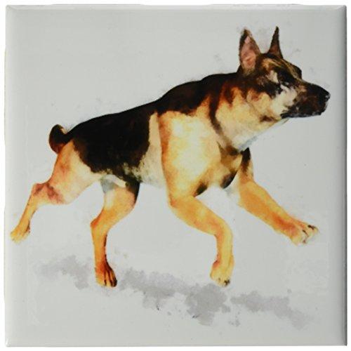 3drose CT _ 45115_ 1Deutscher Schäferhund running-ceramic Fliesen, 4-Zoll (3drose Fliesen)