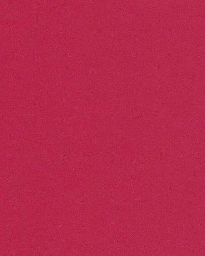 250 fogli DIN A5 rosso ribes colorato 160g/m² Ufficio di carta. Alta qualità colorata carta pizzo per copia Inkjet Laser. Prima classe per Flyers Newsletter poster fax in arrivo avvisi importanti sistemi di memo ordine di avvertimento