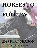 Best Books On Horse Racings - Horses to Follow: 2019 Flat Season Review