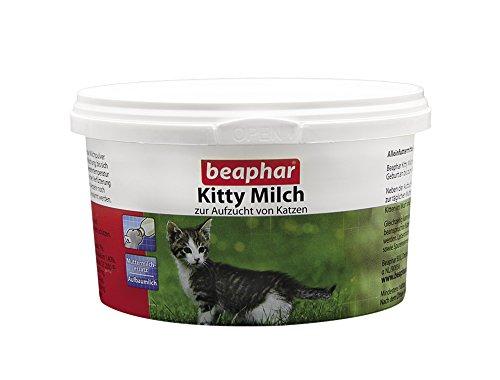 Preisvergleich Produktbild Kitty Milch 200 g