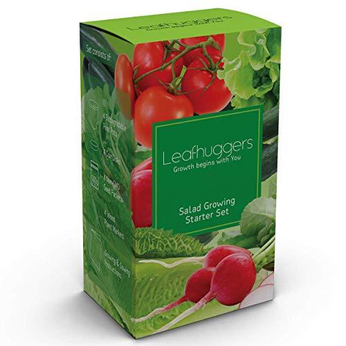 Kit Cultivo Semillas Verduras Para Mini Huerto En