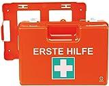 Verbandkoffer MULTI DIN 13 169 / Premium Verbandskasten mit Wandhalterung