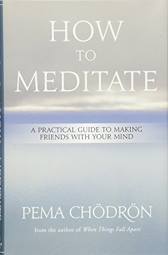 How to Meditate: A Practical Guide to Making Friends with Your Mind