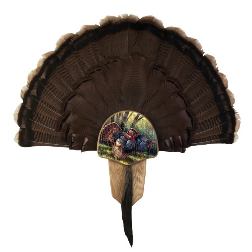 Walnuss Hohl Country Türkei Fan Mount & Display Kit, Siehe Abbildung, Einheitsgröße -
